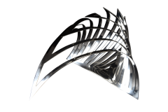 Puercosespin-triangular